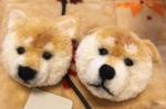 犬ぽんぽん.pngのサムネール画像
